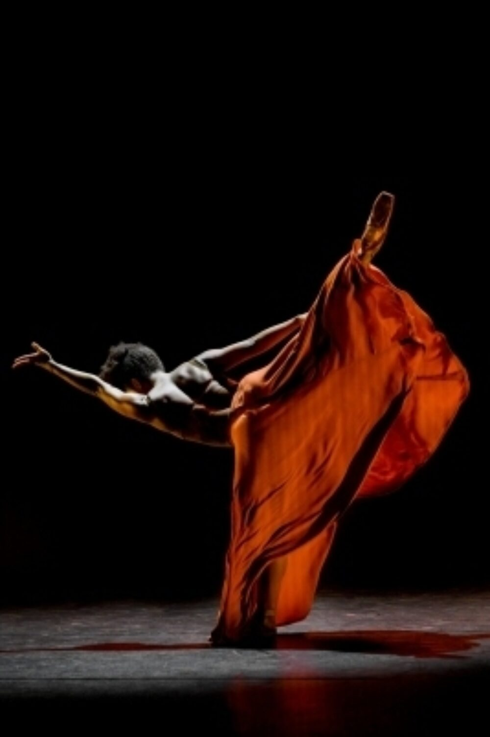 The Grange Ballet Black WASHA C Greenwell 0386}
