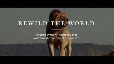 Rewild The World