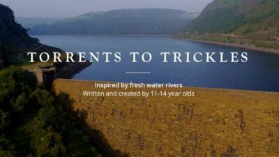 Torrents To Trickles